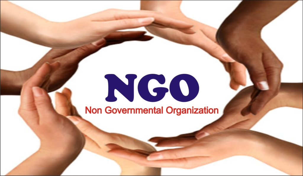 NGO and its functions